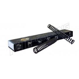Ressorts de fourche 900grs OHLINS Z750 2004-2006