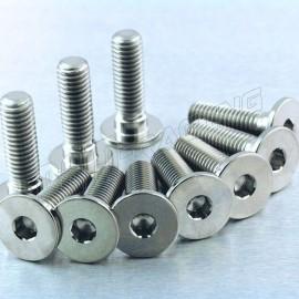 Kit 10 vis de disques de frein avant titane S1000RR, HP4, S1000R, R1200 PRO-BOLT M8x28 MM