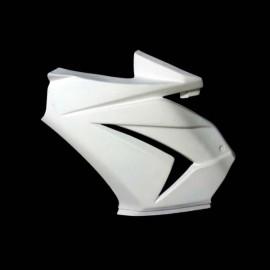 Flanc gauche fibre de verre ZX (EX) 250 Ninja 2008-2012
