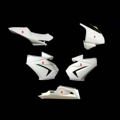 Carénage complet racing 5 parties fibre de verre ZX (EX) 250 Ninja 2008-2012