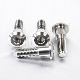 Kit 4 Vis de disques de frein avant TRIUMPH M8x(1.25)x30 MM inox ou titane PRO-BOLT